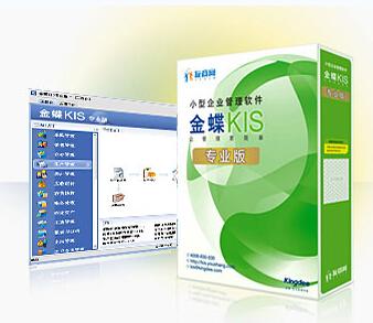 头头娱乐场KIS专业版V14.1总账报表模块 头头娱乐场财务软件正版